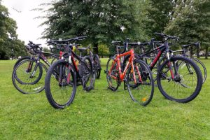 Biketrax bike hire fleet of mountain bikes and road bikes under the trees in Epping Forest